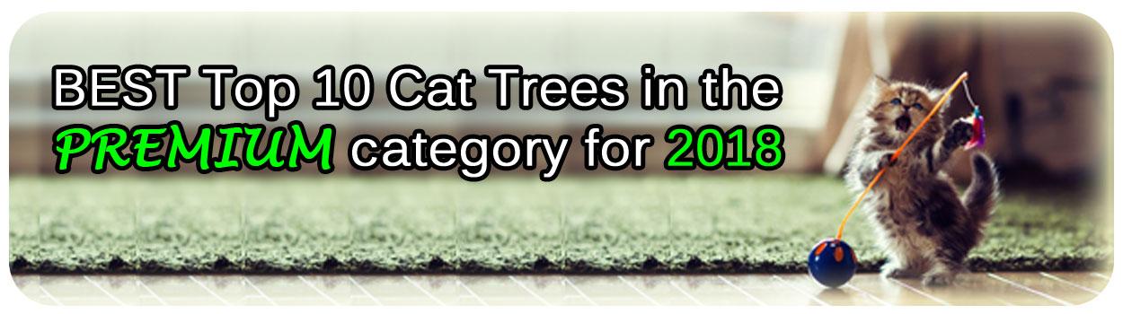 premium cat trees review picture with singing cat