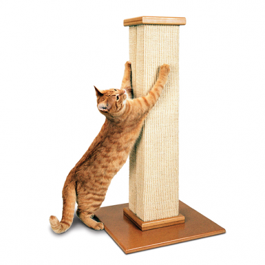 picture of a tall cat scratching post with cat stretching