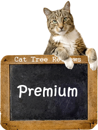 orange cat sitting on top of premium cat trees reviews button