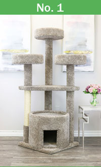 No 1 premium cat tree Prestige Main Coon cat tree