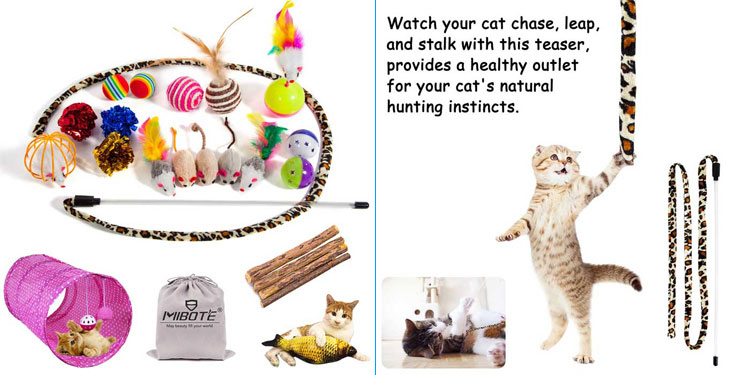 cat-toys-bundle-Featured Image