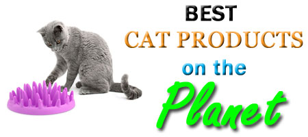 best-cat-product